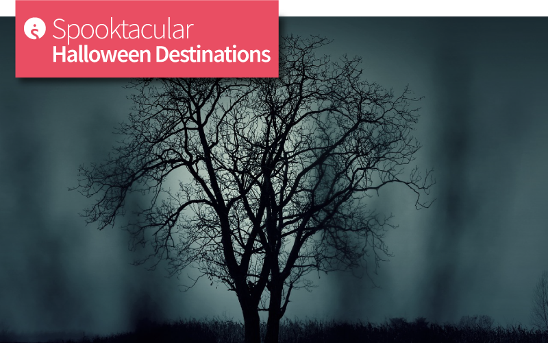 Spooktacular Halloween Destinations