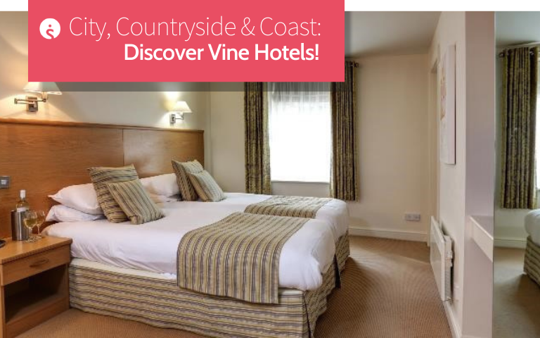 Vine Hotels Featured Image